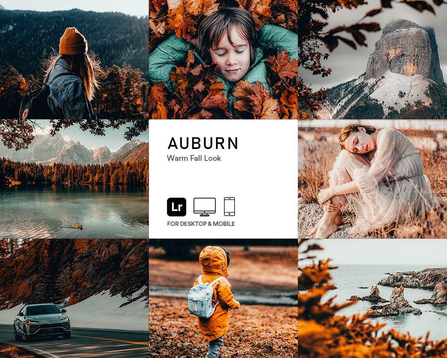 preset_auburn