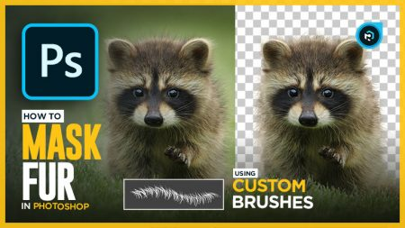 The Best Way To Select Fur in Photoshop